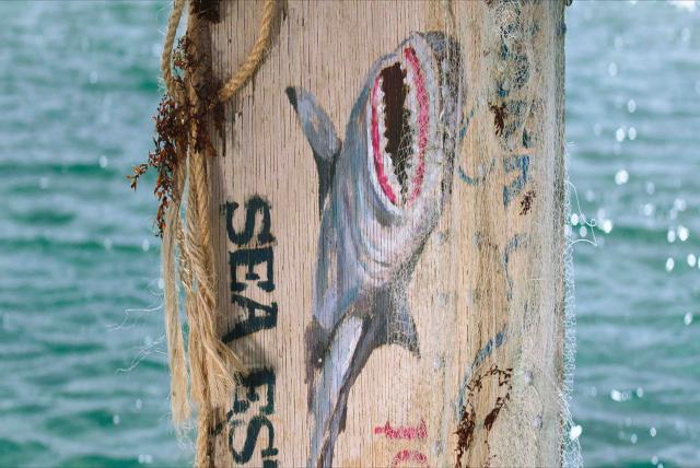 深海鯊機劇照 2