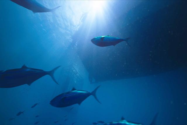 深海鯊機劇照 4