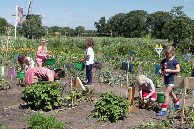 孩子們的菜園農場劇照 3