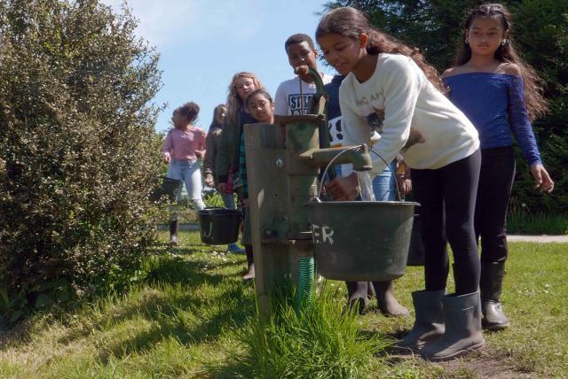 孩子們的菜園農場劇照 7