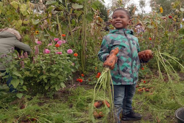 孩子們的菜園農場劇照 9