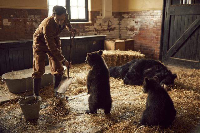 夢想動物園3 線上看