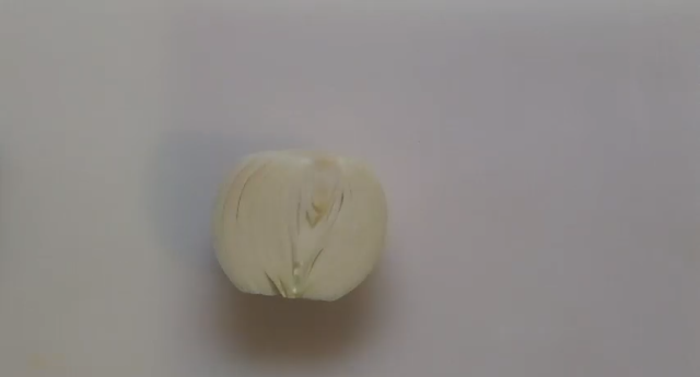 洋蔥切碎劇照 1