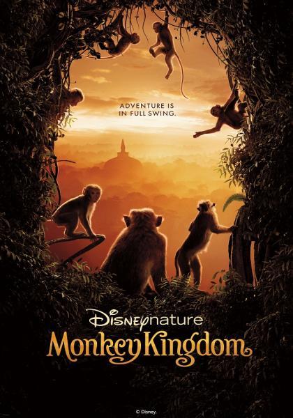 猴子王國線上看