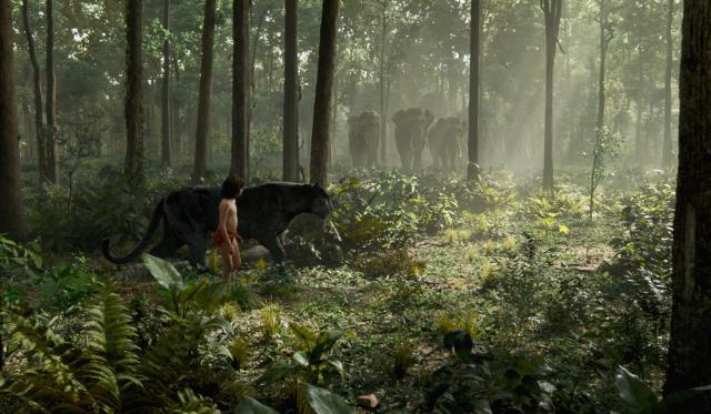 與森林共舞劇照 4