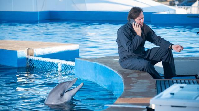 伯尼小海豚2劇照 5