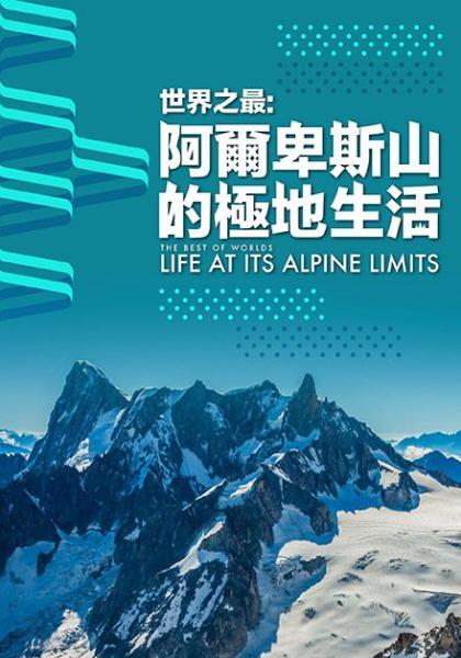 世界之最:阿爾卑斯山的極地生活線上看