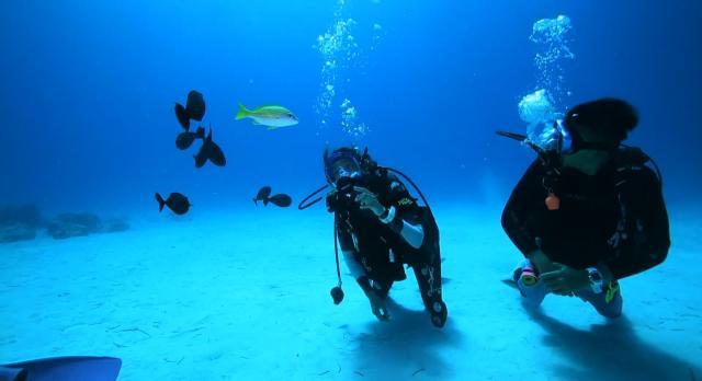 水下三十米 第二季第1集【塞班島】 線上看