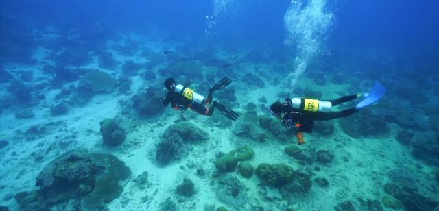 水下三十米 第三季 第9集劇照 1