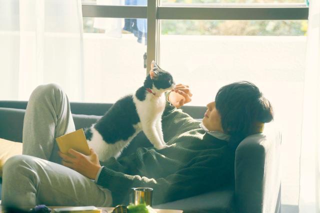 旅貓日記劇照 2