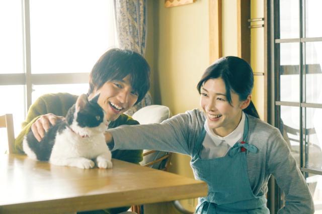 旅貓日記預告片 01
