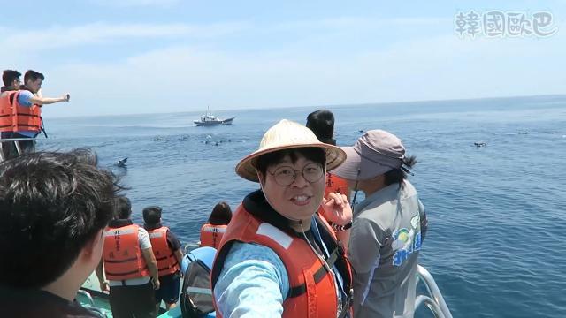 韓國歐巴 《去龜山島與海豚打交道》劇照 1