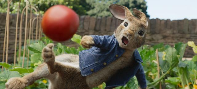 比得兔(HD)劇照 2