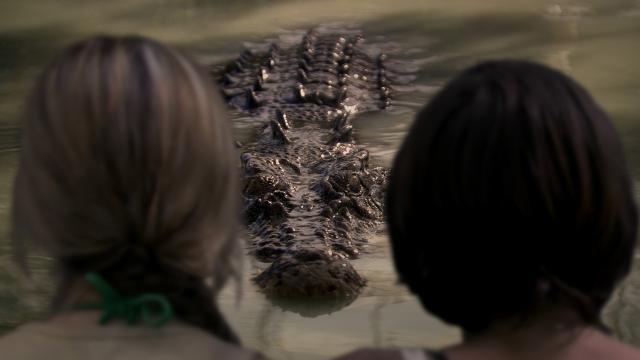 死水:黑鱷劇照 5