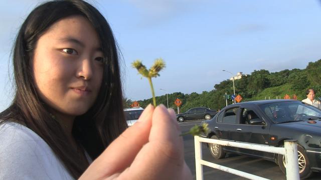 我們的青春,在台灣劇照 5