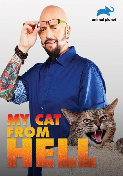 管教惡貓 第八季線上看