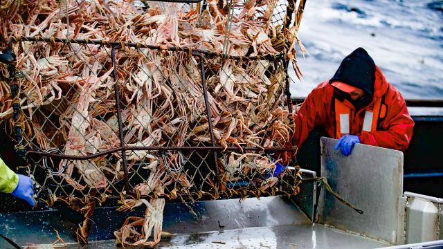 漁人的搏鬥 第十六季劇照 2