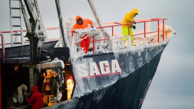 漁人的搏鬥 第十六季 免於傷害劇照 1
