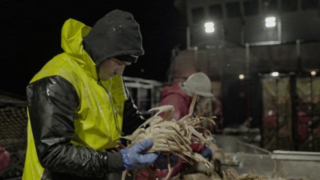 漁人的搏鬥 第十六季第22集【血濃於水】 線上看