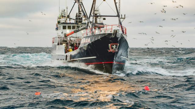 漁人的搏鬥 第十六季第23集【完全改觀】 線上看