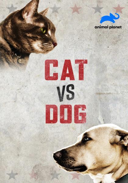貓狗大戰線上看