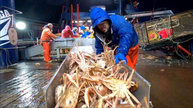 漁人的搏鬥 第十七季劇照 2