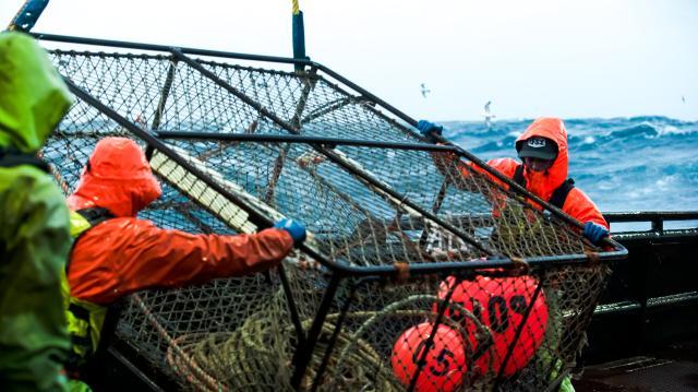 漁人的搏鬥 第十七季 第4集劇照 1