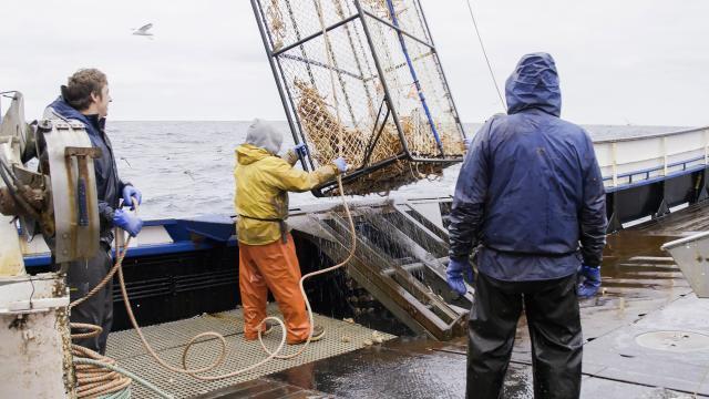 漁人的搏鬥 第十七季 第5集劇照 1