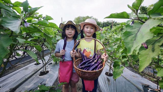 GO!蔬菜小隊!第2集劇照 2
