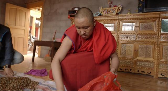 雪域奇葩-藏醫藥雪域奇葩-藏醫藥 第2集 線上看