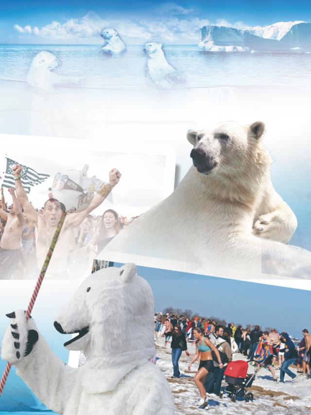 世界好望角-感受北極熊冬泳的溫度(1)劇照 1