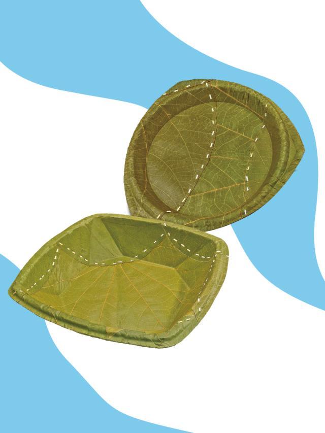克漏字-環保發明:用葉子做的容器劇照 1