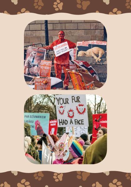 世界好望角 為動物發聲—世界動物權日 (1)線上看