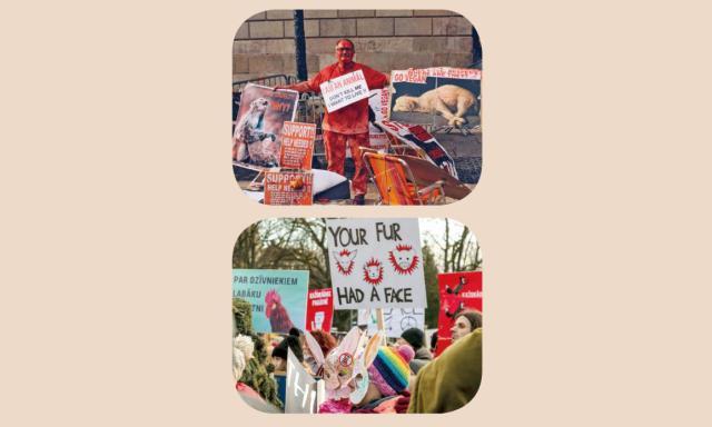 世界好望角 為動物發聲—世界動物權日 (1)劇照 1