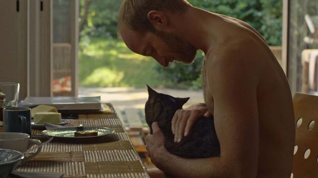 愛是一隻貓劇照 2