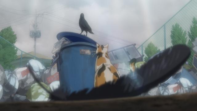 排球少年!! 全集第12集【貓與烏鴉再相見】 線上看