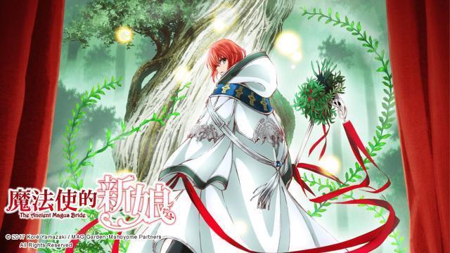 魔法使的新娘劇照 1