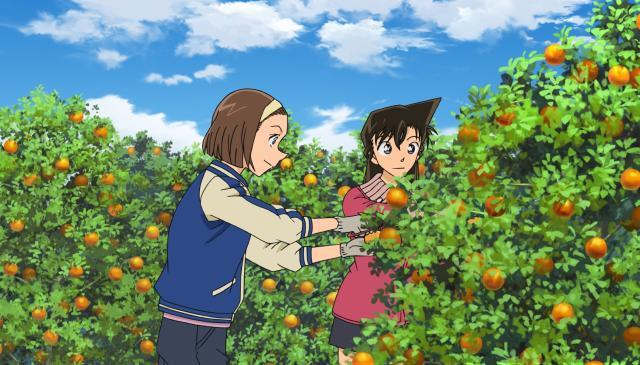名偵探柯南 第944至981集第979集【夕陽下的橘子園】 線上看
