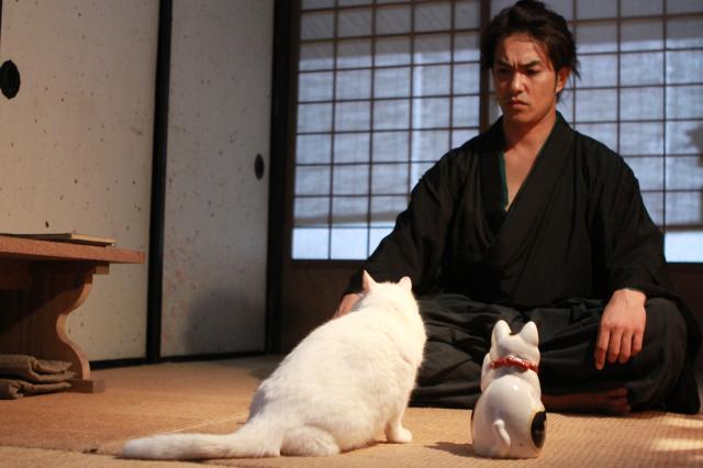 貓侍特別版第一季4 線上看