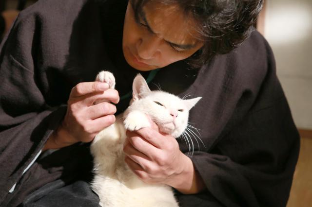貓侍特別版第二季 06劇照 2
