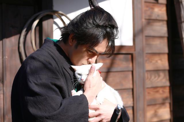 貓侍特別版第二季 11劇照 1