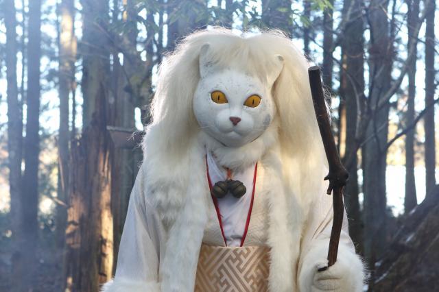 貓侍特別版第二季 特別篇劇照 1