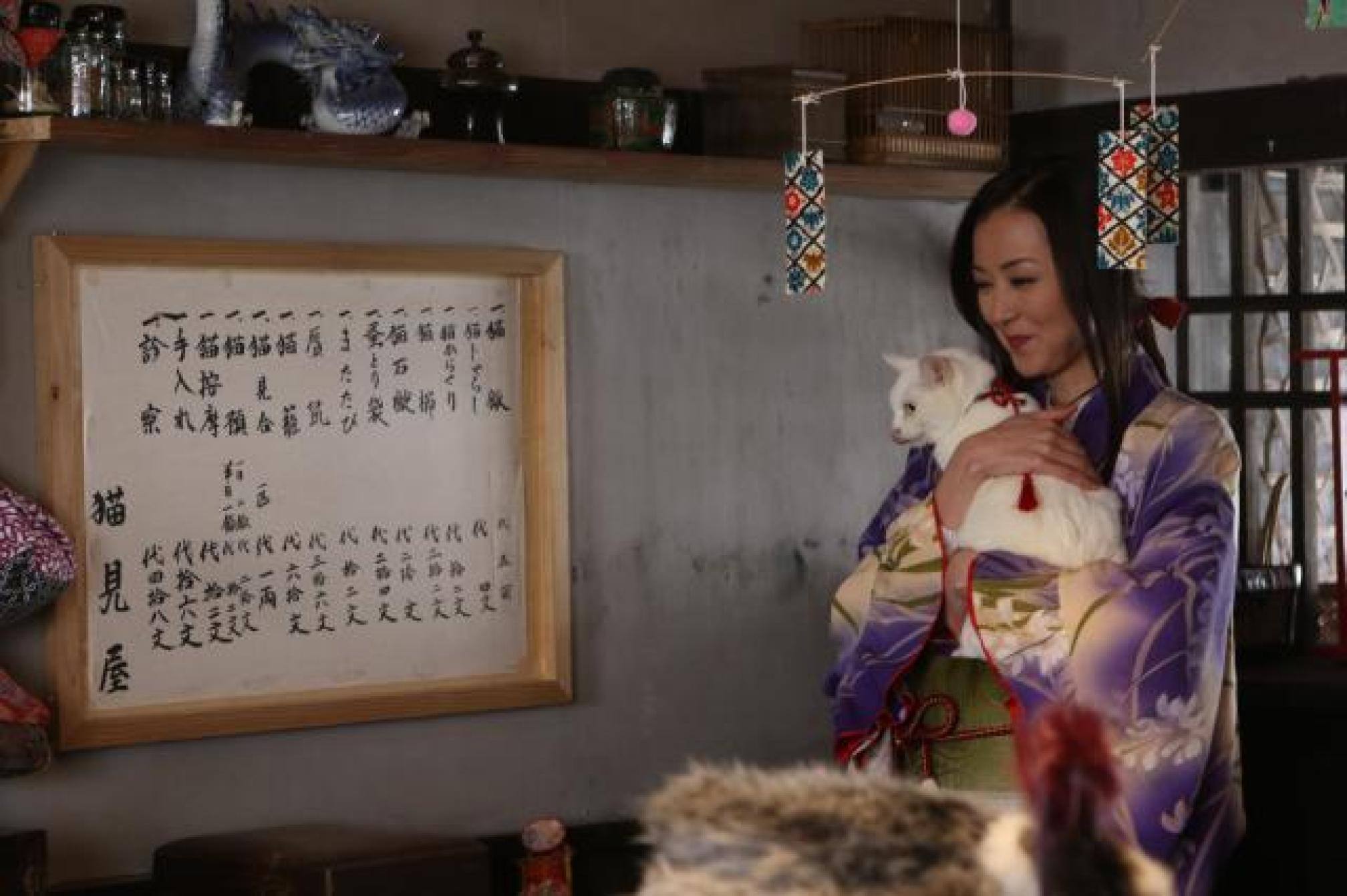 貓侍特別版第二季劇照 2