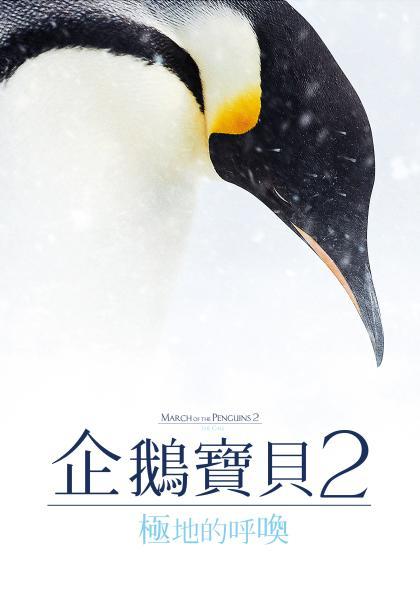 企鵝寶貝2:極地的呼喚線上看