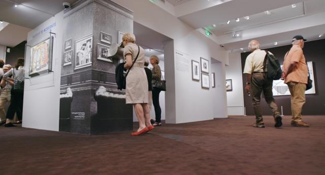 希特勒對畢卡索:被奪取的名畫劇照 2