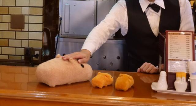 水豚君第15話【與米白君一起 純喫茶巡禮】 線上看