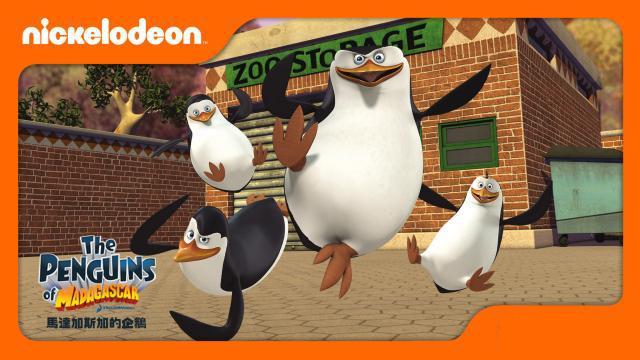 馬達加斯加的企鵝 第二季劇照 1
