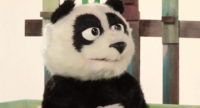 猜猜我是誰第1集【熊貓老師】 線上看