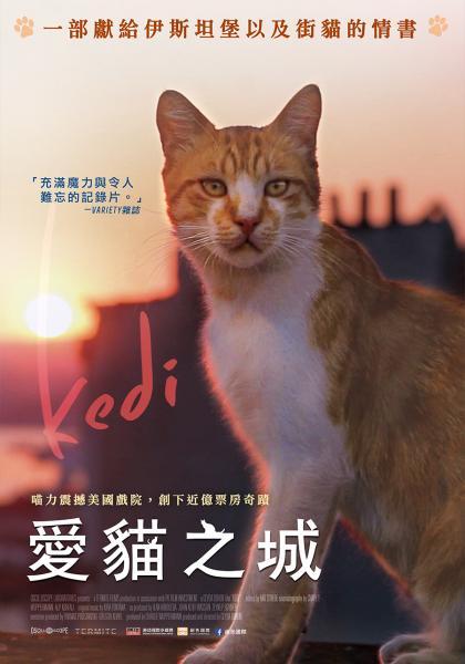 愛貓之城線上看