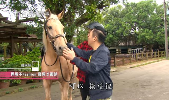 在台灣的故事939 線上看